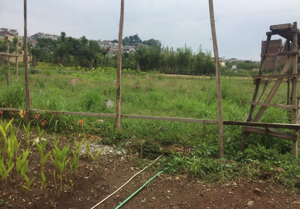 paramount village semarang